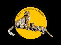 tanzania-adventure-safari
