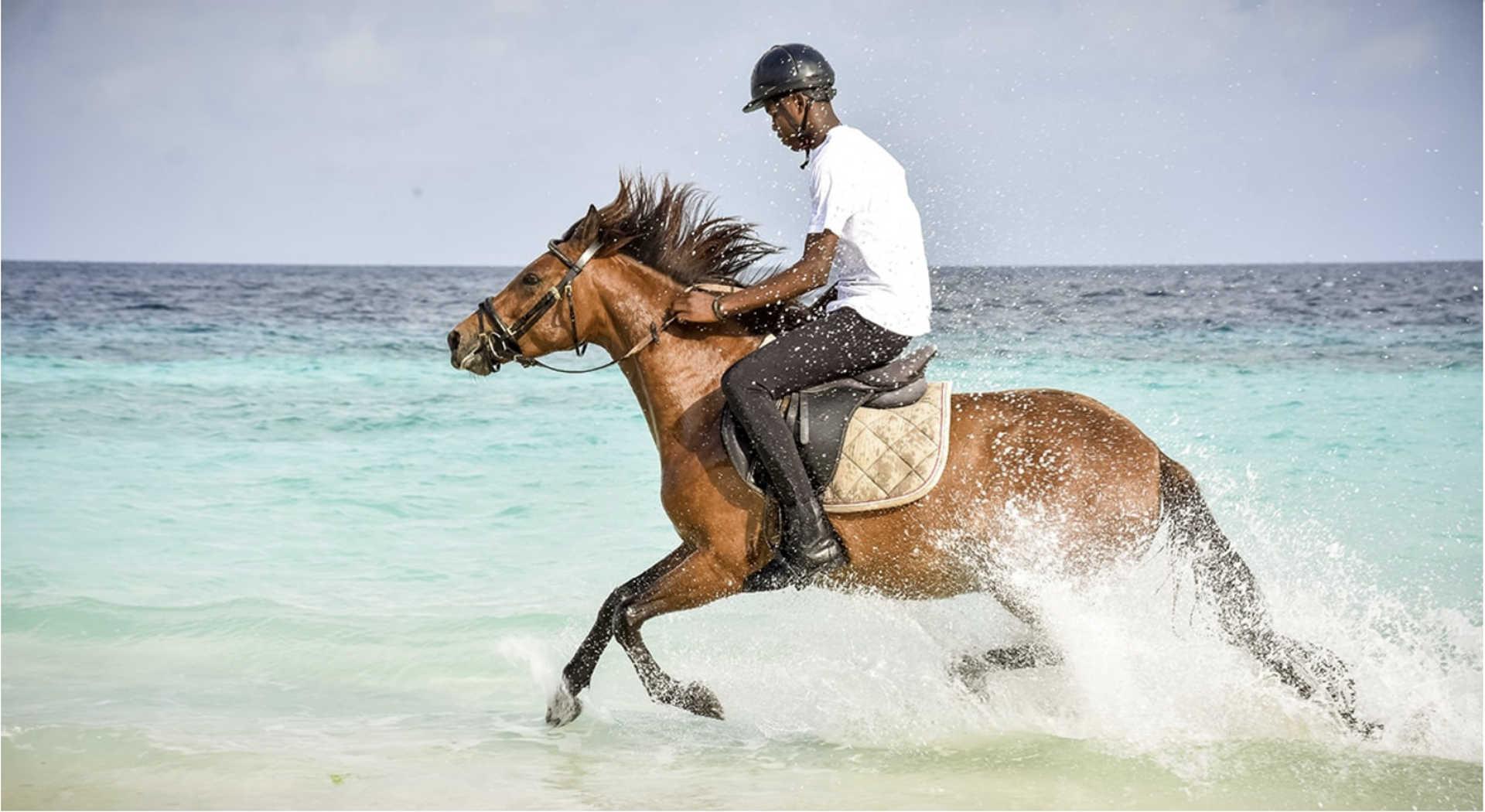 Zanzibar horseback riding